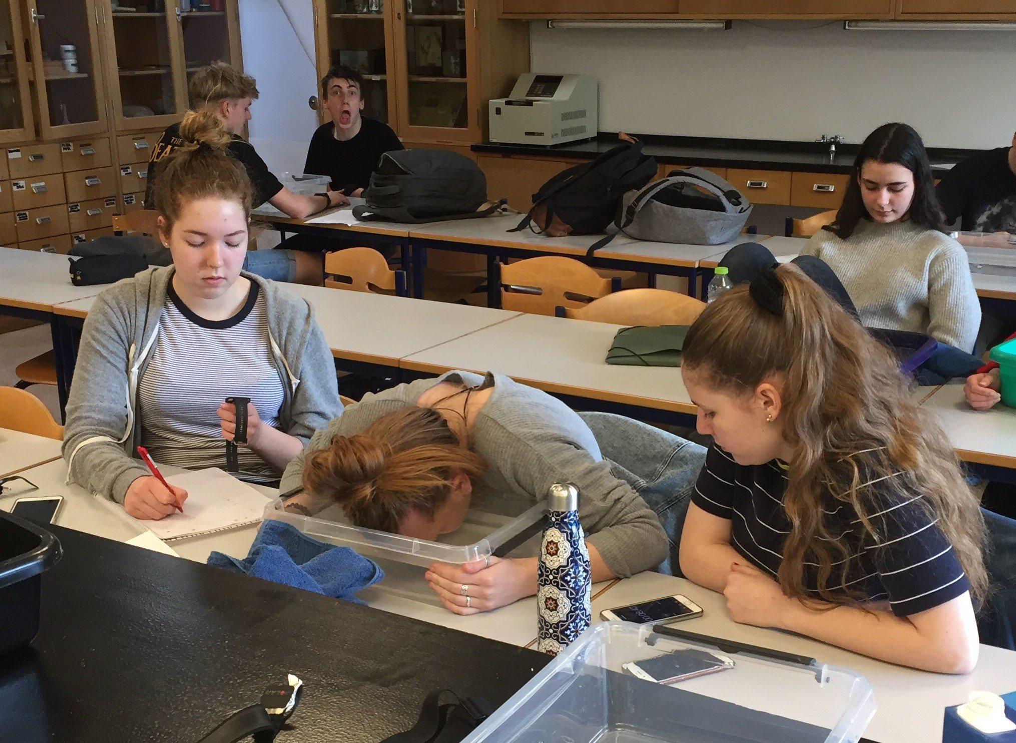 Science Club er en frivillig aktivtet om naturvidenskab